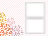 Bold Blossoms - Bold Blossoms