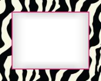 8x10 - Vibrant Zebra - 8x10 - Vibrant Zebra