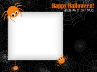 Halloween Spiders - Halloween Spiders
