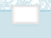 Delicate Flourishes - Powder Blue - Delicate Flourishes - Powder Blue